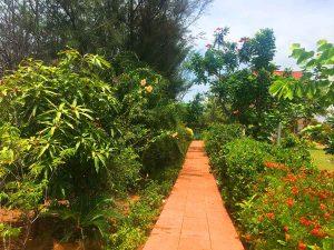 green land beach house chennai