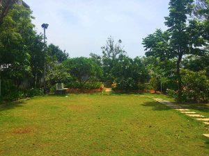 green land beach house for rent in ecr