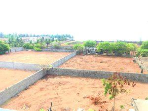Little Island Beach House Chennai ECR