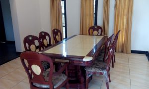 Dolphin City Beach House for Hire in ECR